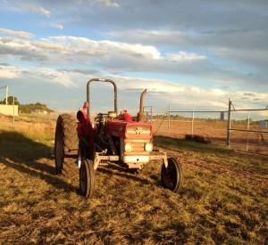tractor_Richmond